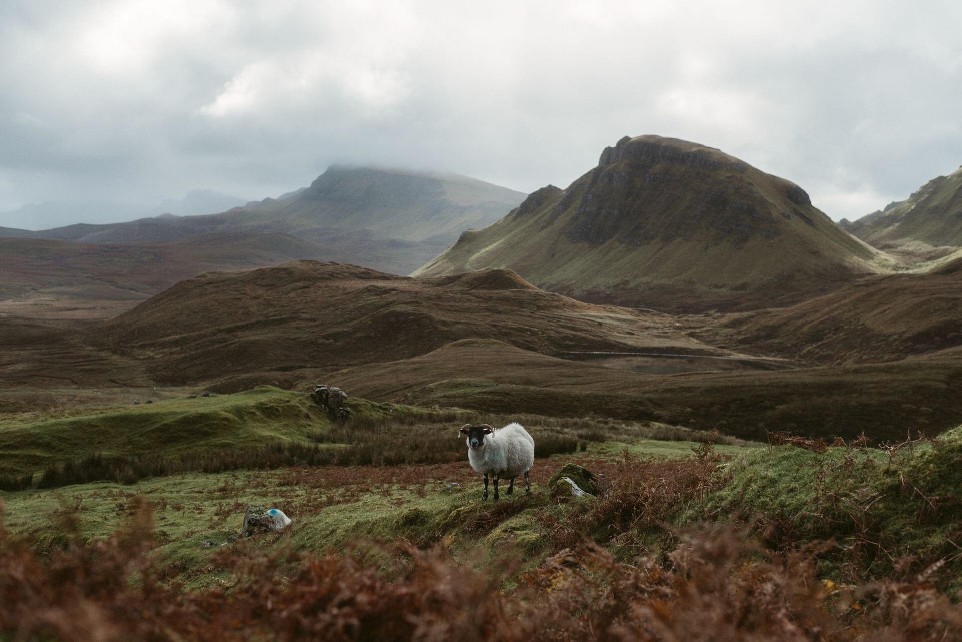 Quiraing Elopement Isle of Skye 157