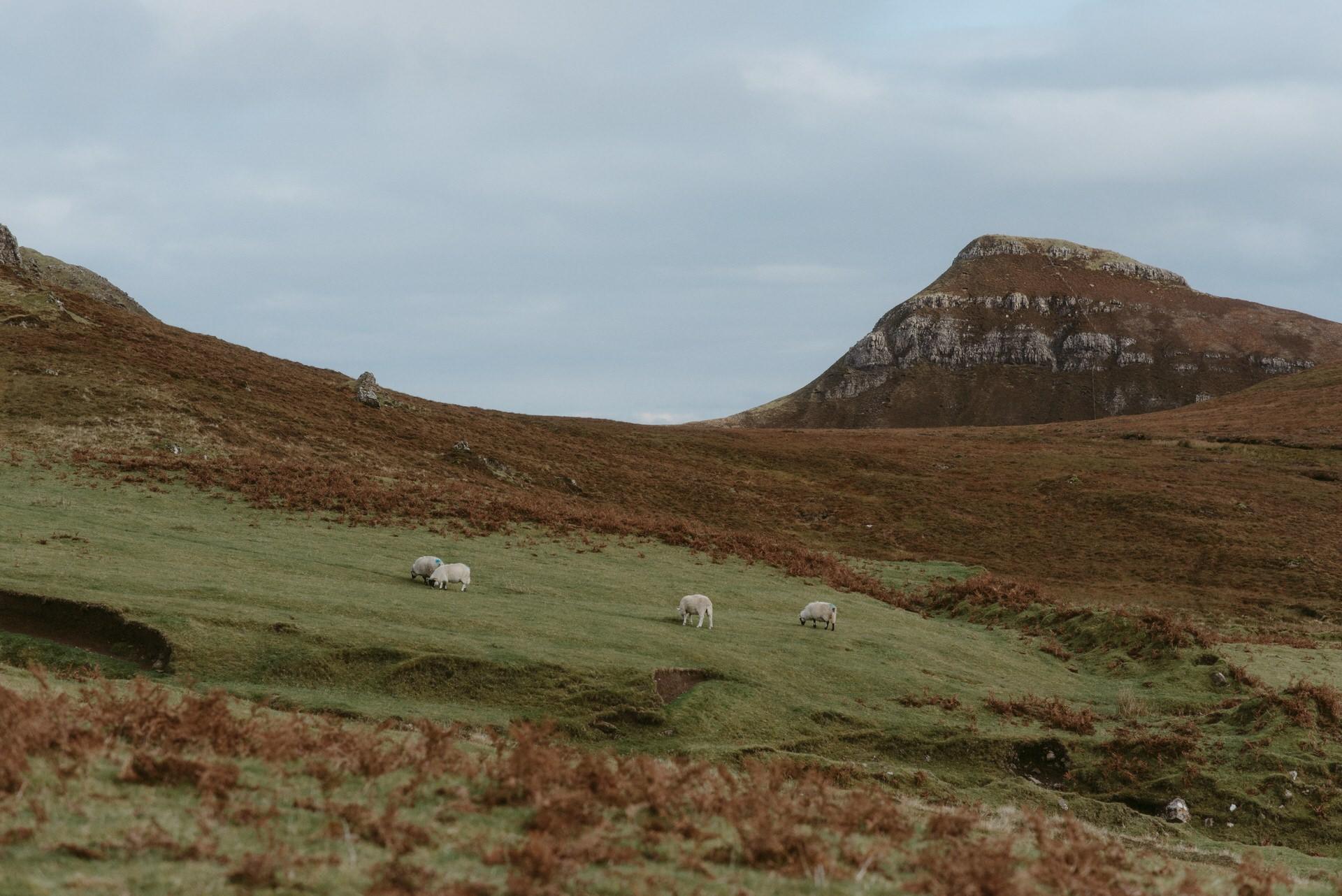Quiraing Elopement Isle of Skye 256